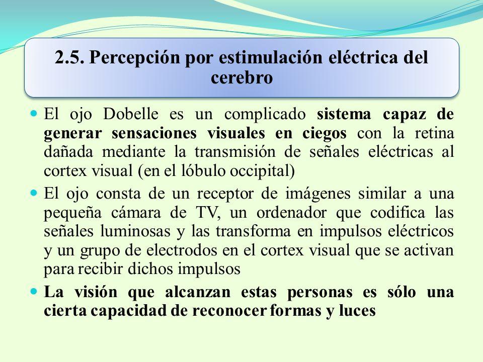 2.5. Percepción por estimulación eléctrica del cerebro