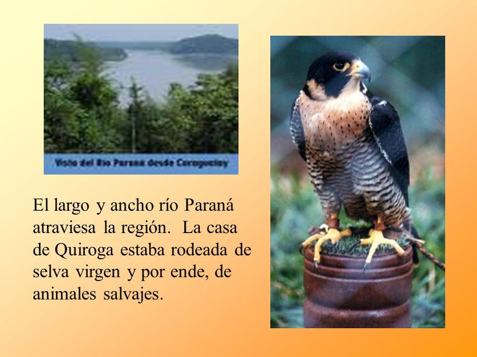 El largo y ancho río Paraná atraviesa la región
