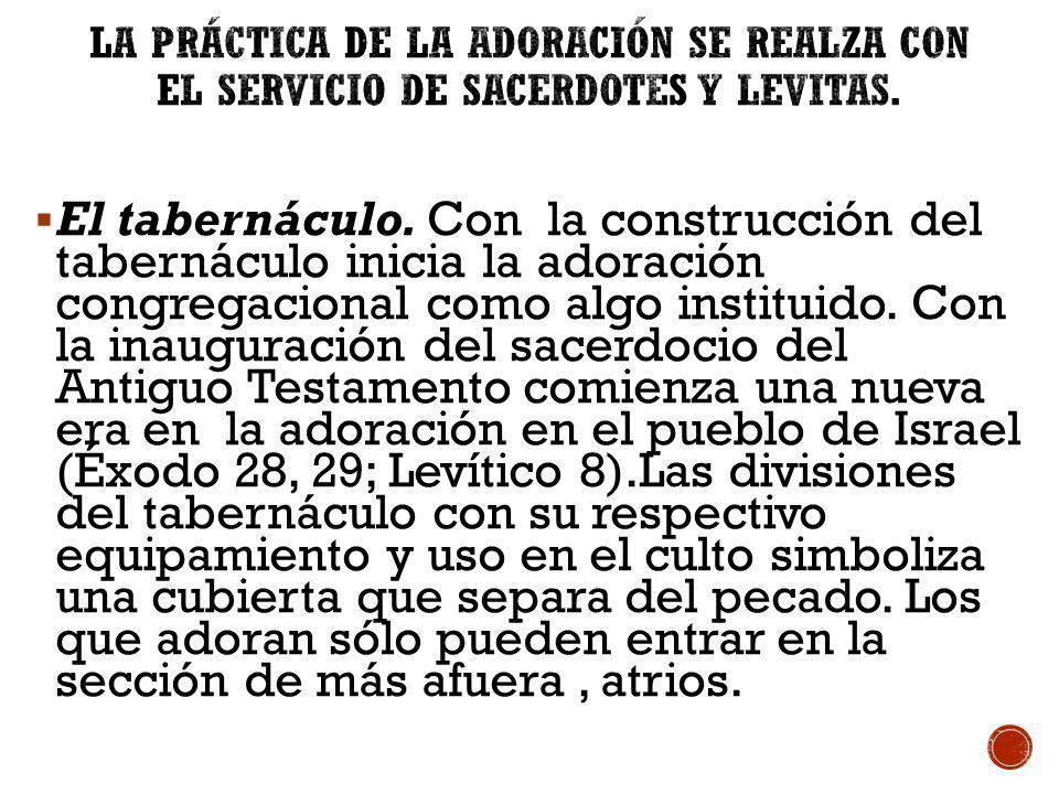 La Práctica de la Adoración Se Realza con el Servicio de Sacerdotes y Levitas.