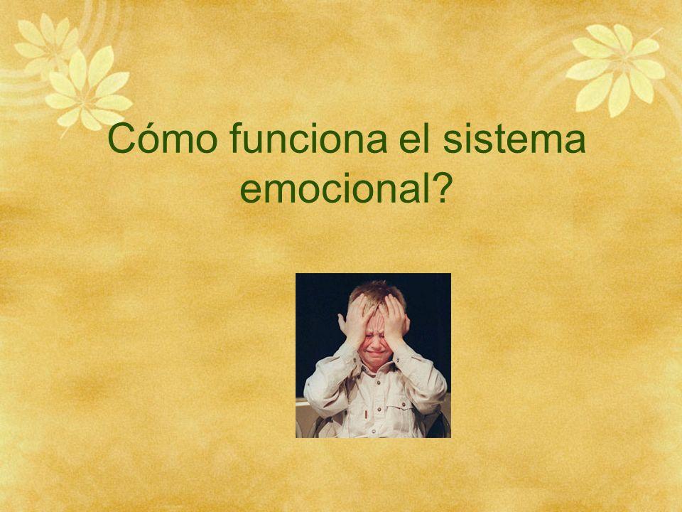 Cómo funciona el sistema emocional