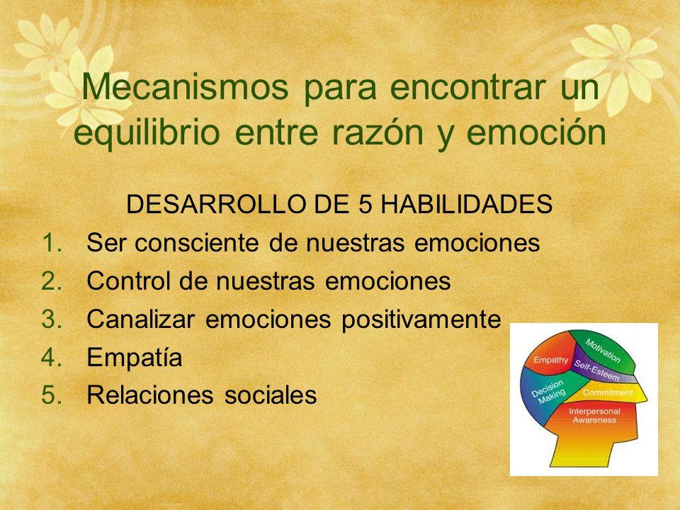 Mecanismos para encontrar un equilibrio entre razón y emoción