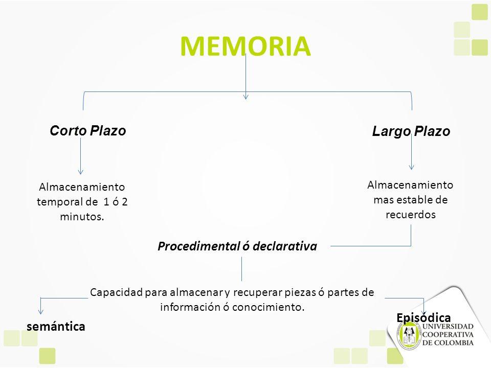 MEMORIA Corto Plazo Largo Plazo Procedimental ó declarativa Episódica
