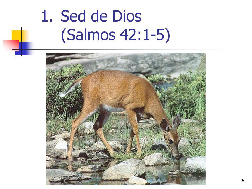 Sed de Dios (Salmos 42:1-5)