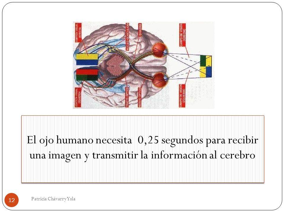 El ojo humano necesita 0,25 segundos para recibir una imagen y transmitir la información al cerebro