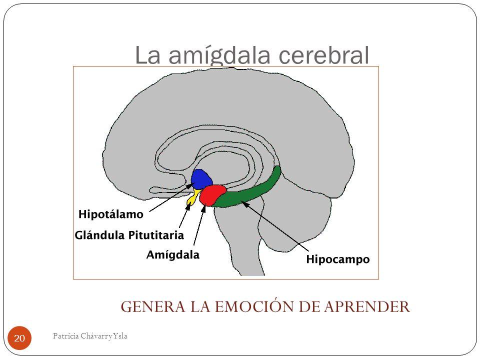 GENERA LA EMOCIÓN DE APRENDER