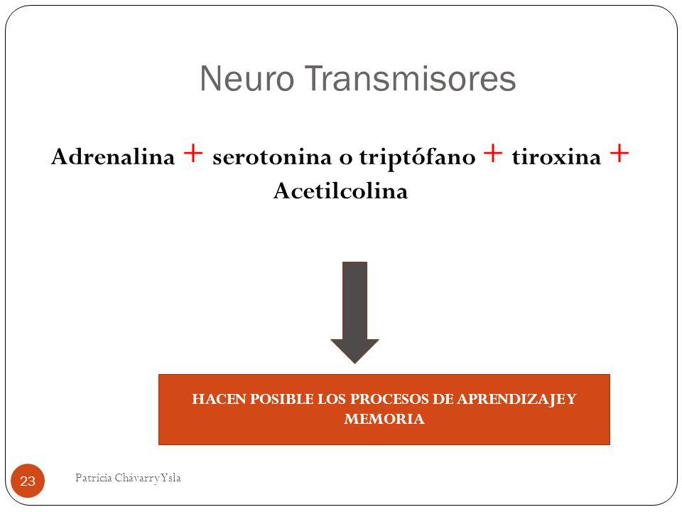 Neuro Transmisores Adrenalina + serotonina o triptófano + tiroxina + Acetilcolina. HACEN POSIBLE LOS PROCESOS DE APRENDIZAJE Y MEMORIA.