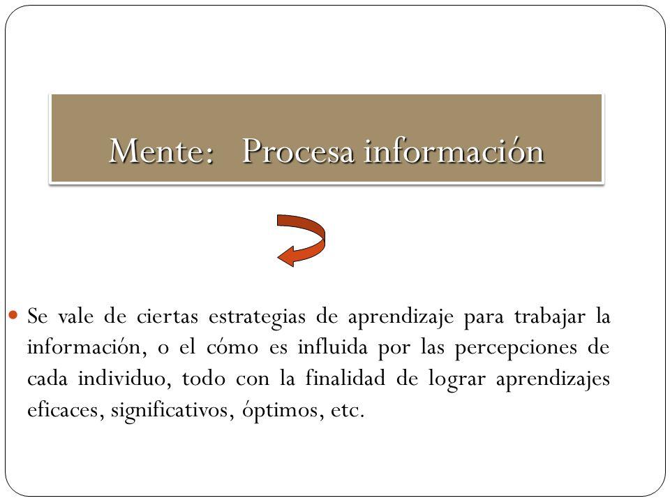 Mente: Procesa información