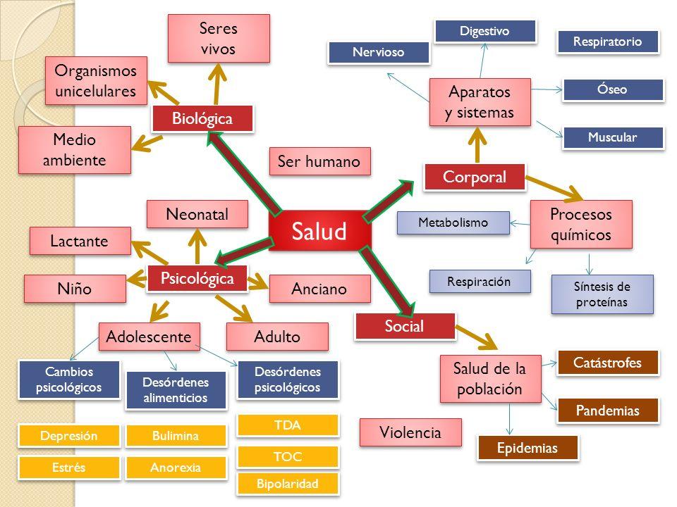 Salud Seres vivos Organismos unicelulares Aparatos y sistemas