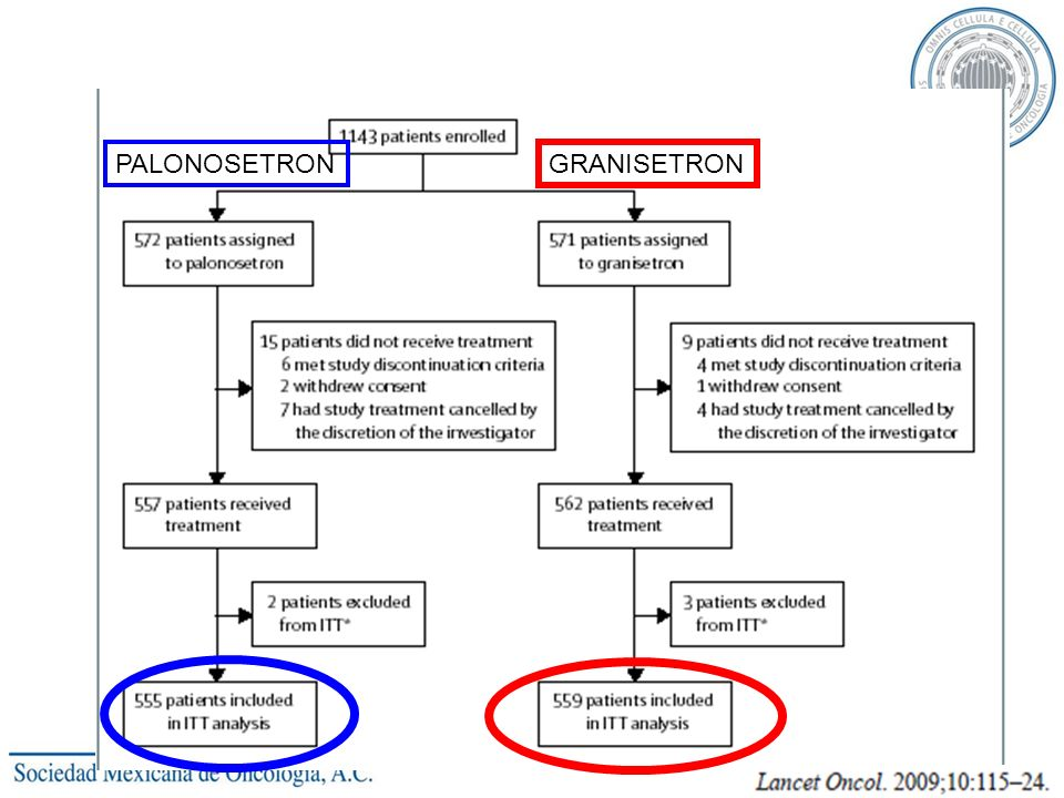The Japanese study 2009 PALONOSETRON GRANISETRON