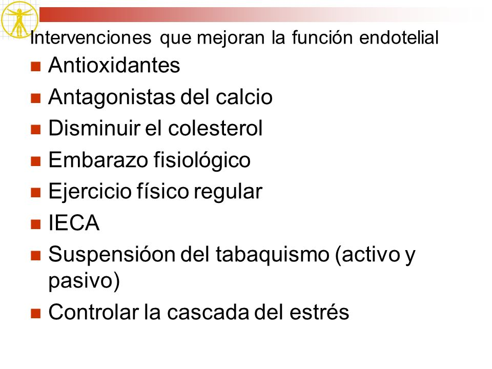 Intervenciones que mejoran la función endotelial
