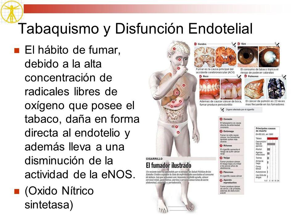 Tabaquismo y Disfunción Endotelial