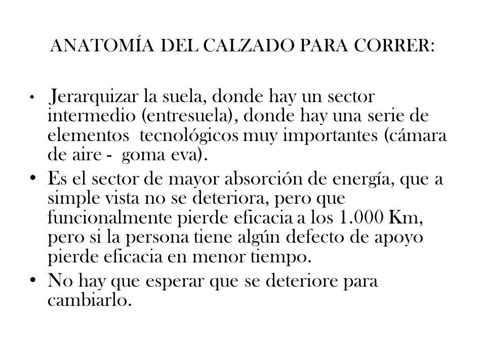 ANATOMÍA DEL CALZADO PARA CORRER: