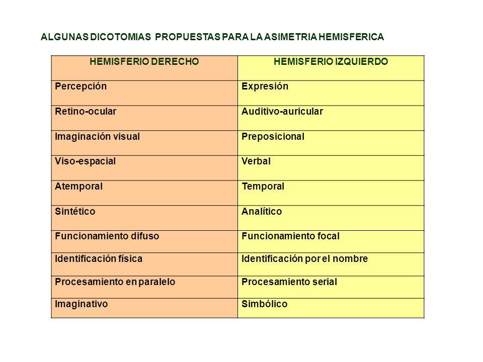 HEMISFERIO DERECHO LESIONES DERECHAS