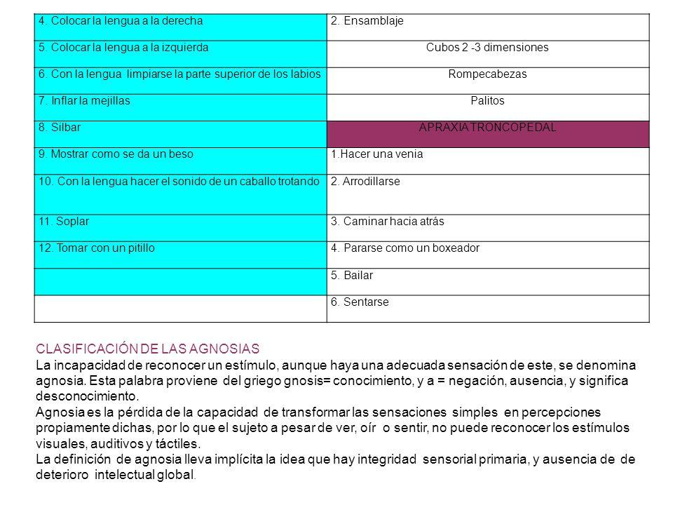 CLASIFICACIÓN DE LAS AGNOSIAS