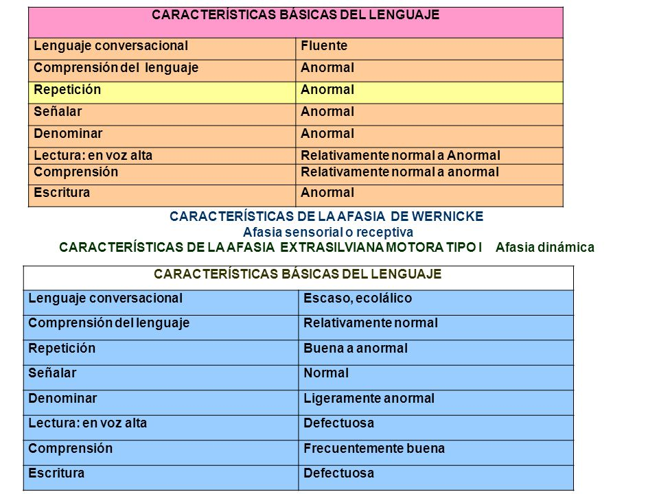 CARACTERÍSTICAS BÁSICAS DEL LENGUAJE Lenguaje conversacional Fluente