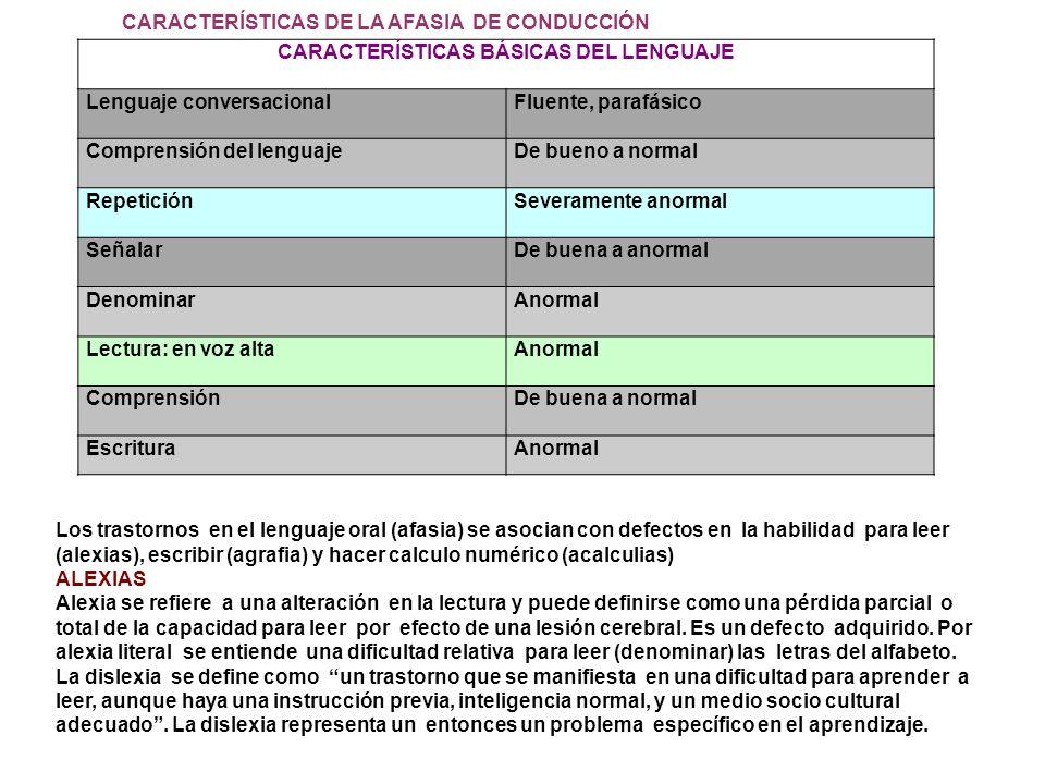 CARACTERÍSTICAS BÁSICAS DEL LENGUAJE