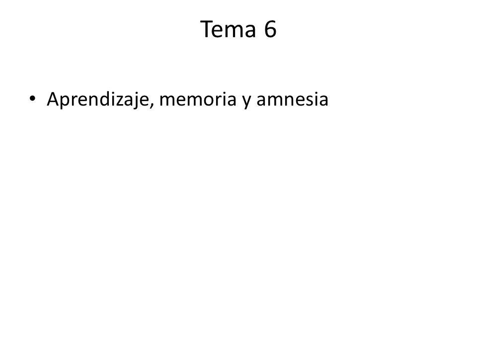 Tema 6 Aprendizaje, memoria y amnesia