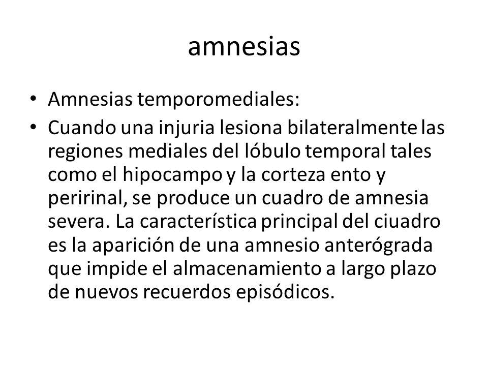 amnesias Amnesias temporomediales: