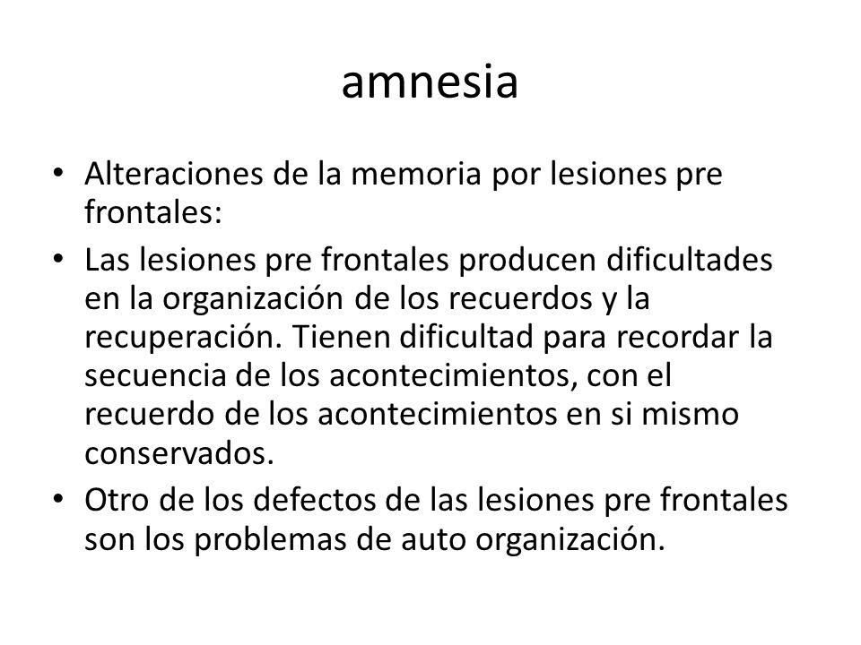 amnesia Alteraciones de la memoria por lesiones pre frontales: