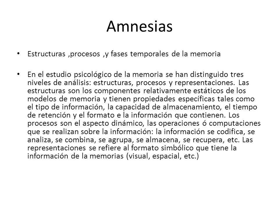 Amnesias Estructuras ,procesos ,y fases temporales de la memoria