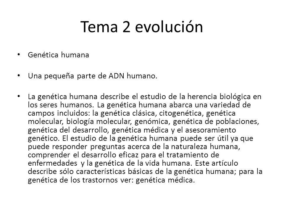 Tema 2 evolución Genética humana Una pequeña parte de ADN humano.