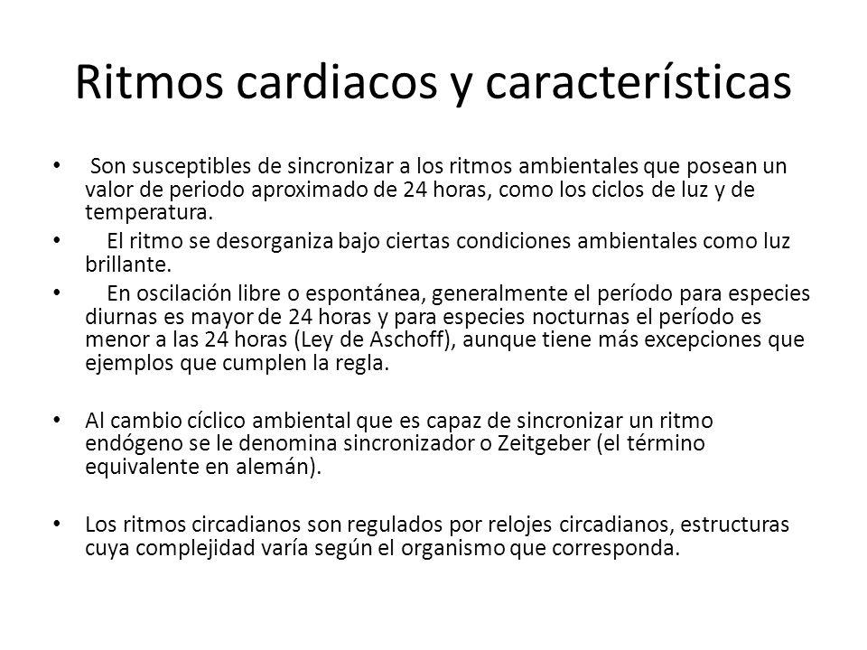 Ritmos cardiacos y características