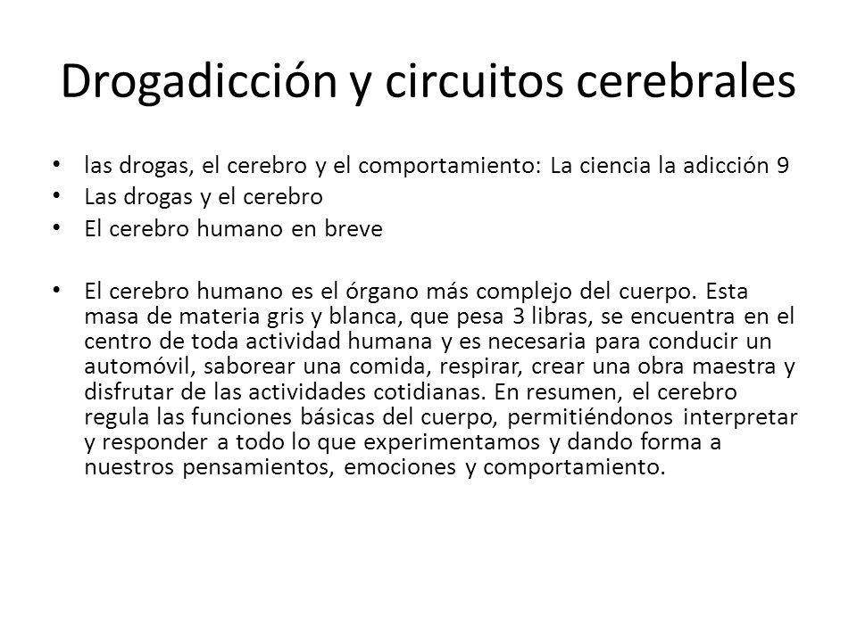 Drogadicción y circuitos cerebrales