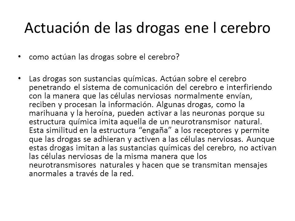 Actuación de las drogas ene l cerebro