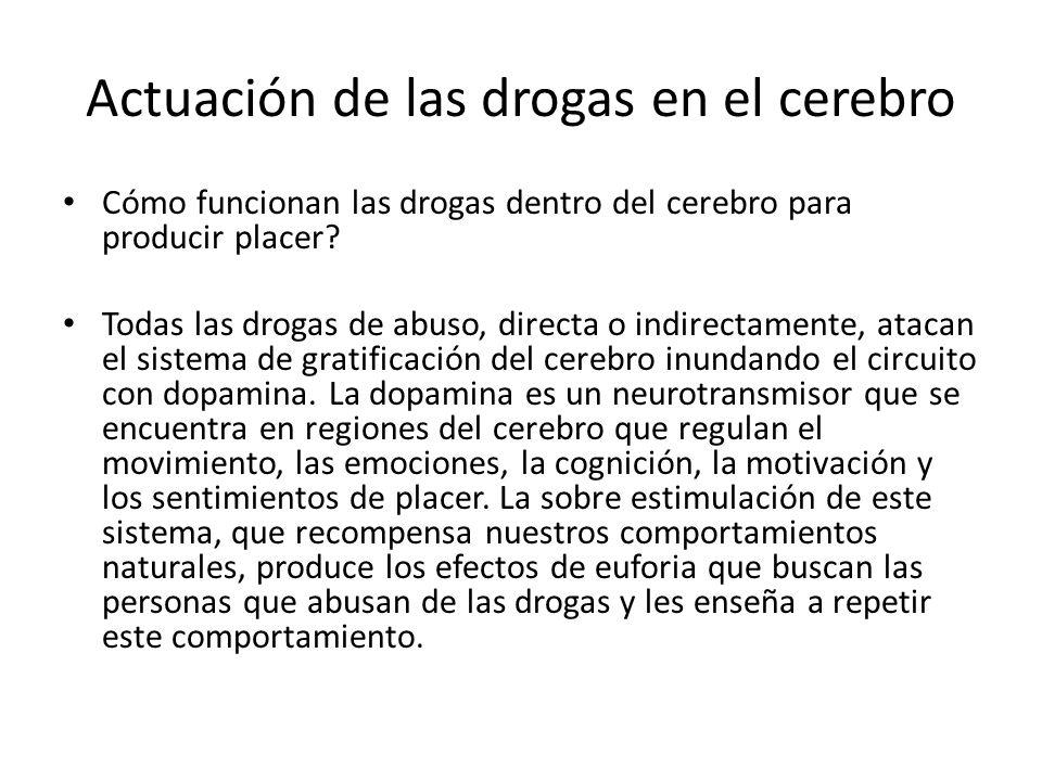 Actuación de las drogas en el cerebro