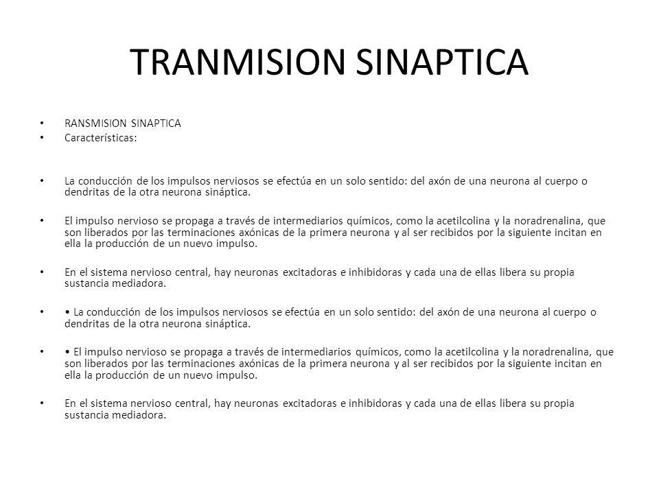 TRANMISION SINAPTICA RANSMISION SINAPTICA Características: