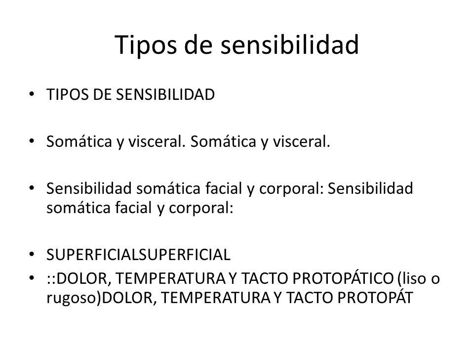 Tipos de sensibilidad TIPOS DE SENSIBILIDAD