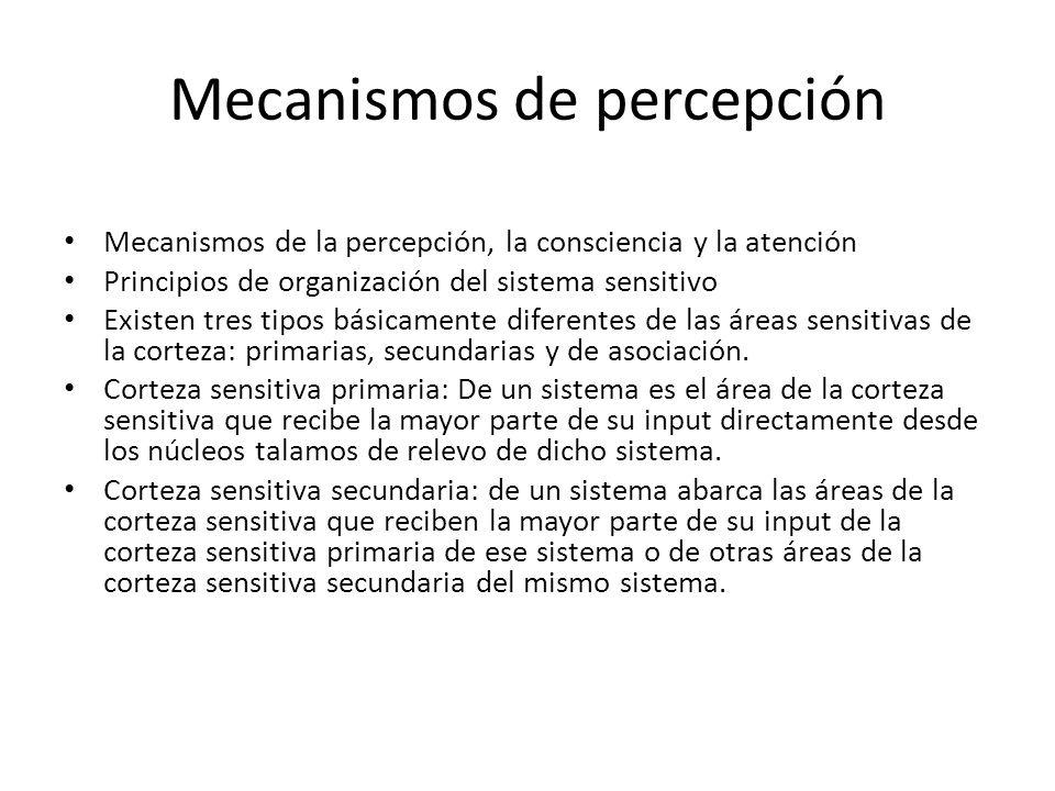 Mecanismos de percepción