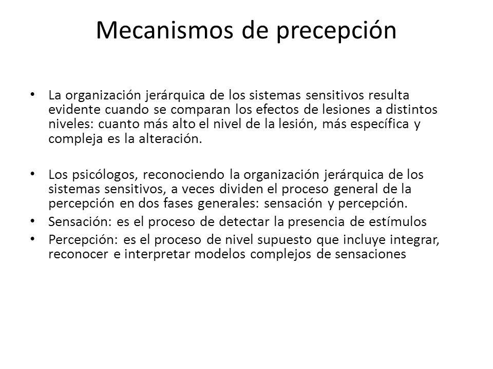Mecanismos de precepción