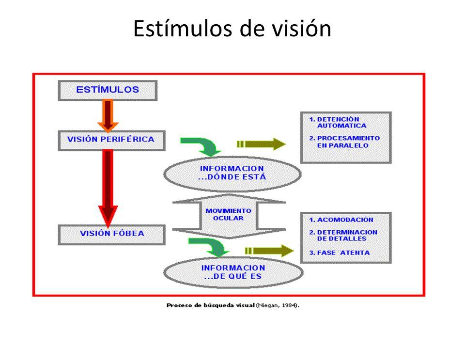 Estímulos de visión