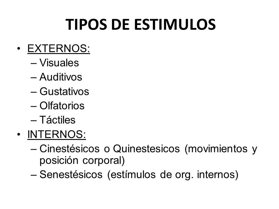 TIPOS DE ESTIMULOS EXTERNOS: Visuales Auditivos Gustativos Olfatorios