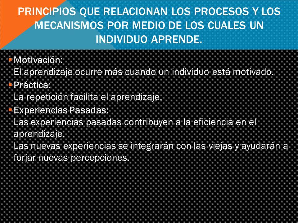 principios que relacionan los procesos y los mecanismos por medio de los cuales un individuo aprende.