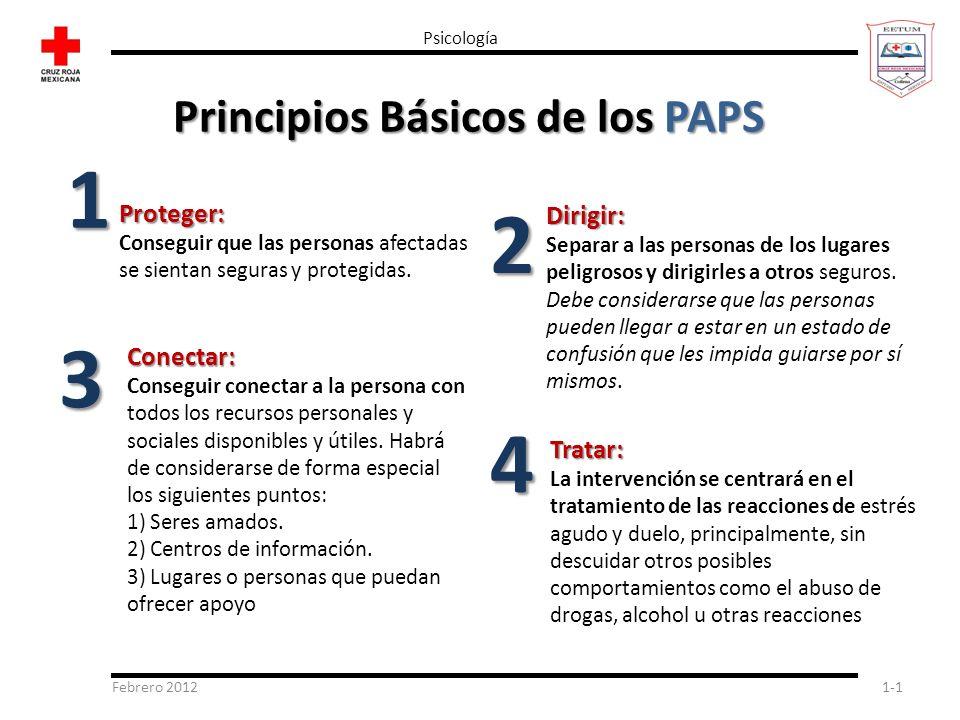 Principios Básicos de los PAPS