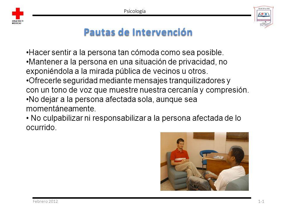 Pautas de Intervención