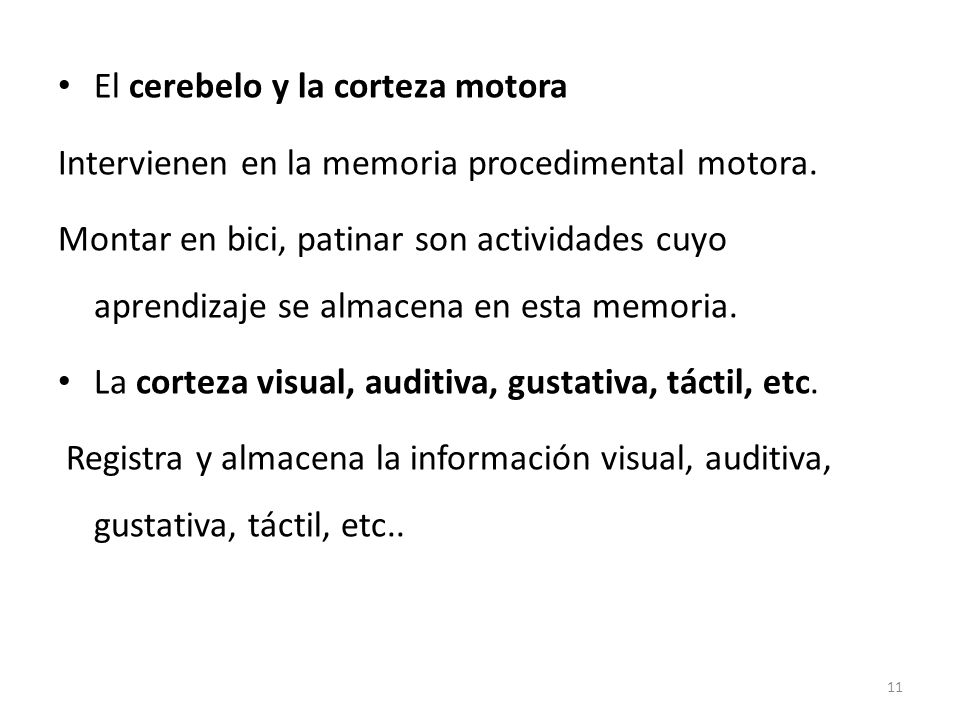 El cerebelo y la corteza motora
