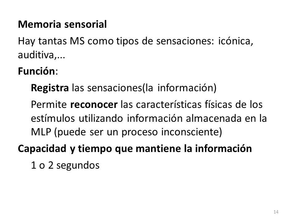 Memoria sensorial Hay tantas MS como tipos de sensaciones: icónica, auditiva,...