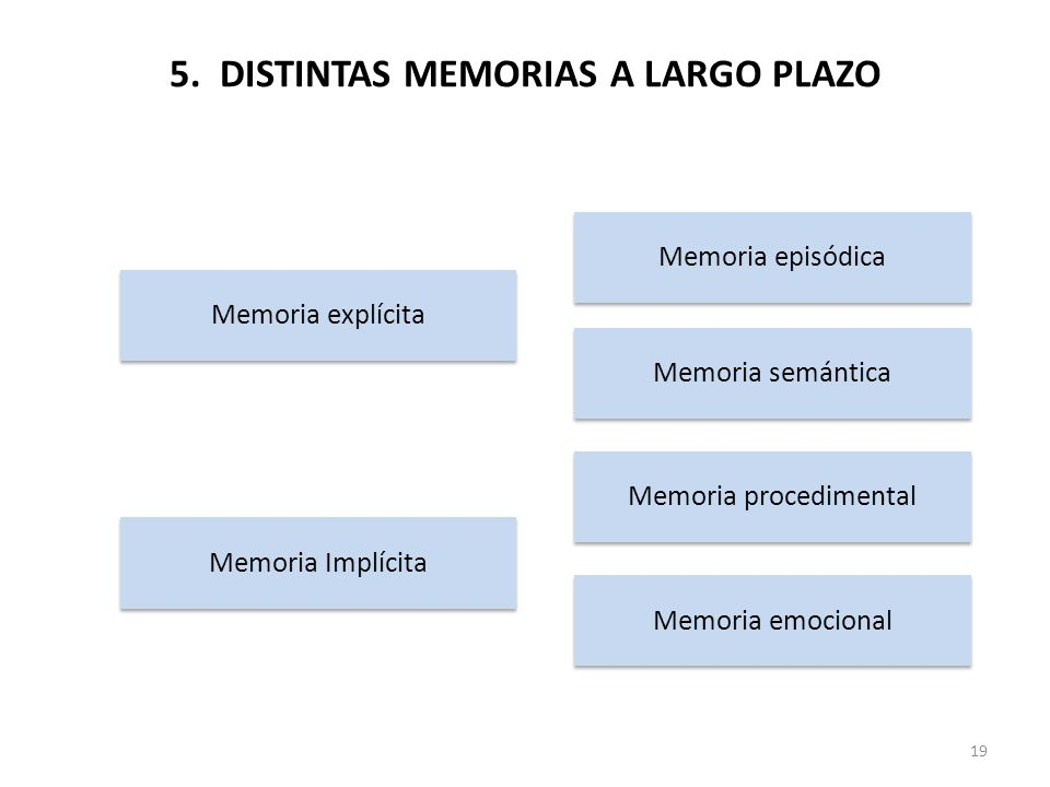 5. DISTINTAS MEMORIAS A LARGO PLAZO