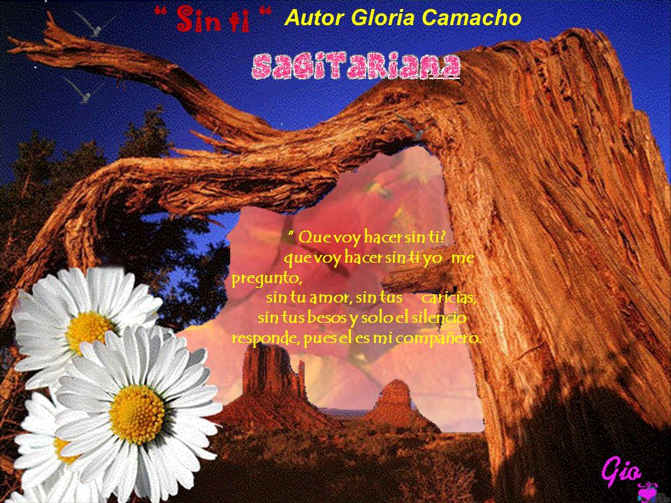Sin ti Autor Gloria Camacho