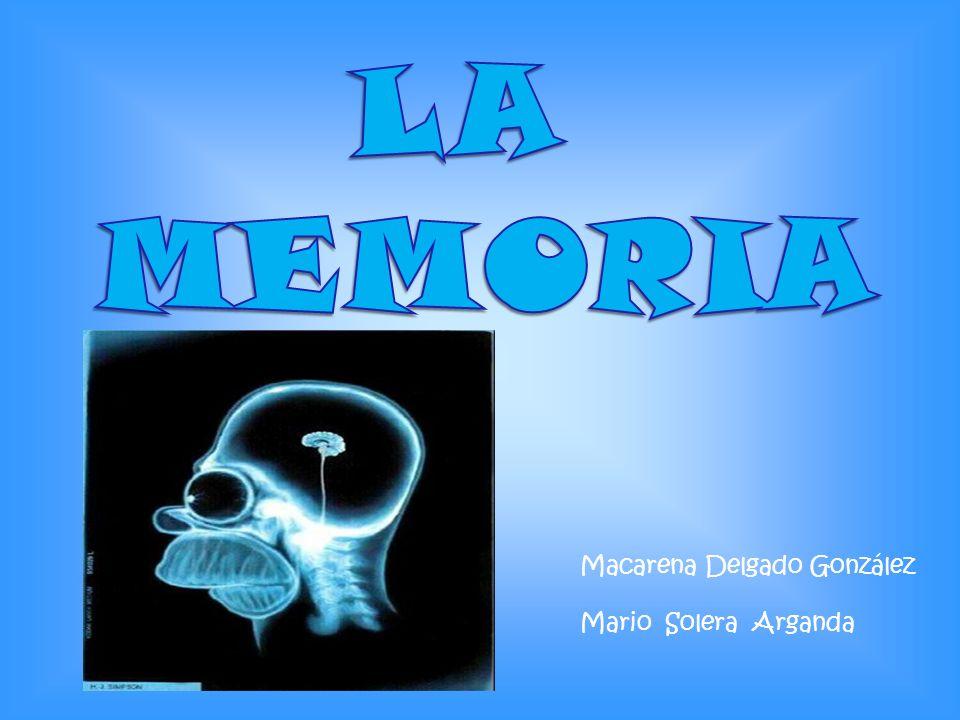 LA MEMORIA Macarena Delgado González Mario Solera Arganda