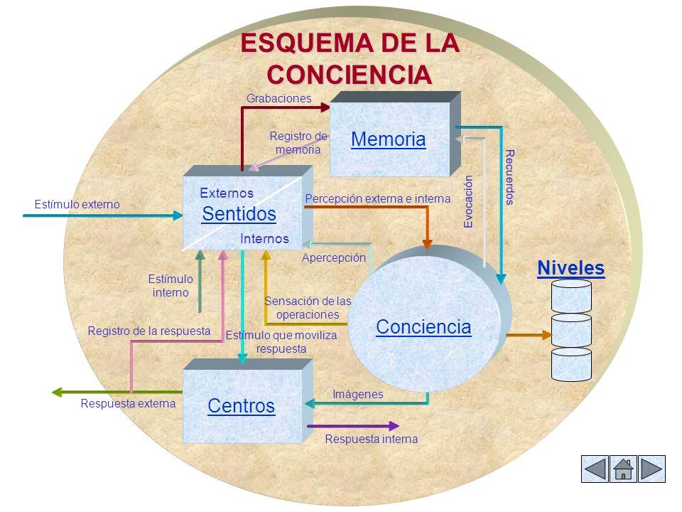 ESQUEMA DE LA CONCIENCIA