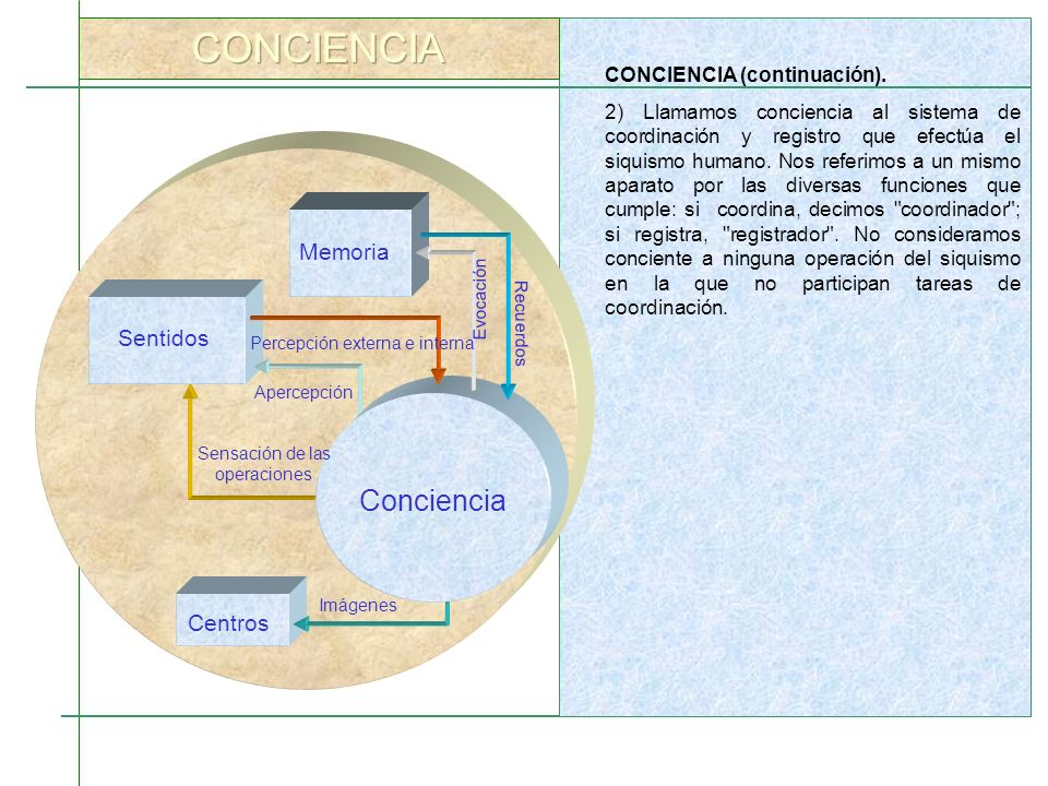 CONCIENCIA Conciencia Memoria Sentidos Centros