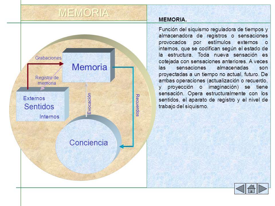 MEMORIA Memoria Sentidos Conciencia MEMORIA.