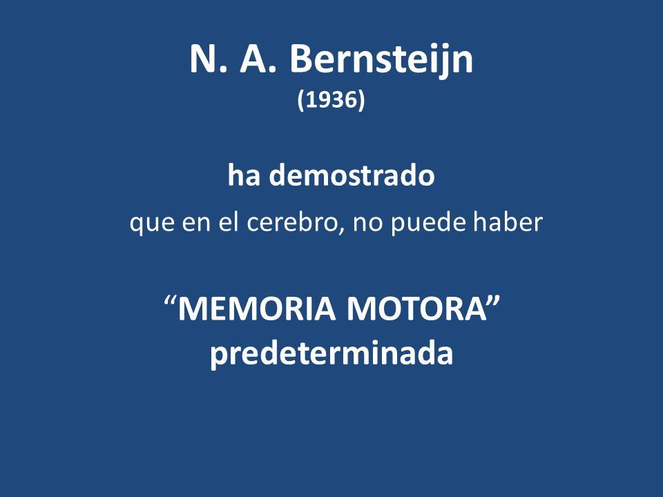 N. A. Bernsteijn (1936) ha demostrado que en el cerebro, no puede haber MEMORIA MOTORA predeterminada