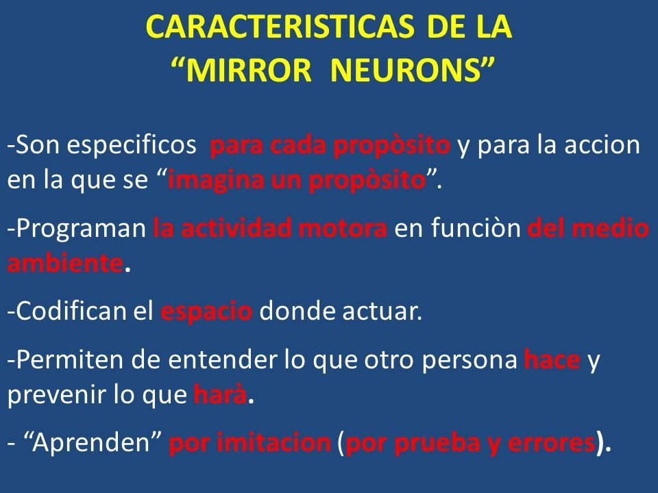 CARACTERISTICAS DE LA MIRROR NEURONS