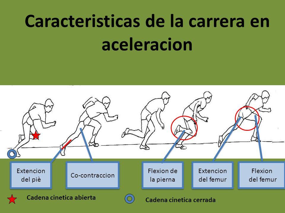 Caracteristicas de la carrera en aceleracion