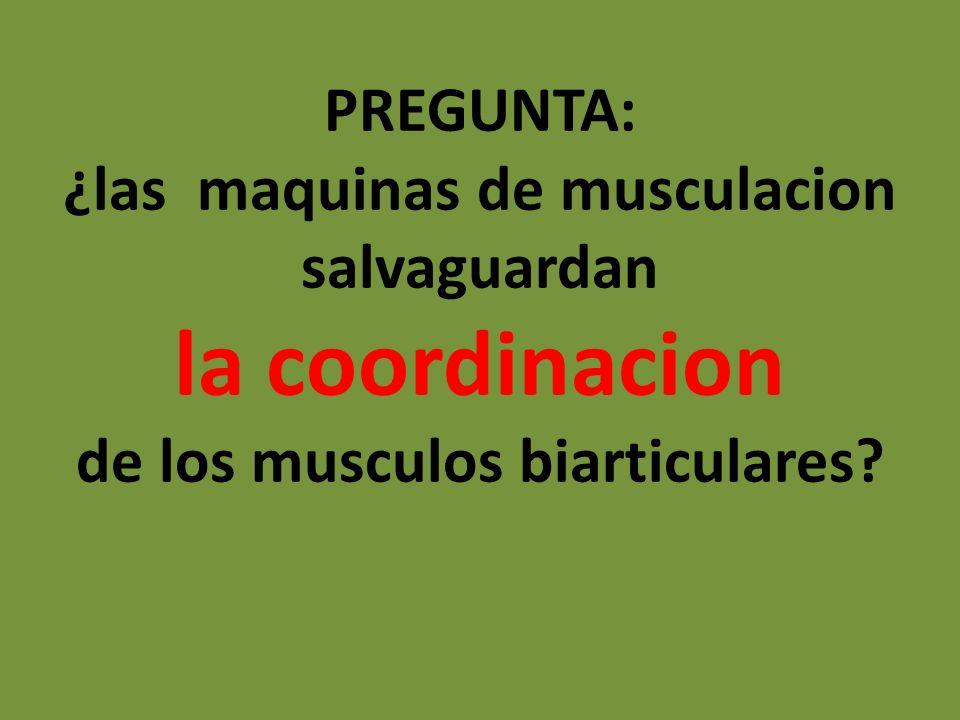 PREGUNTA: ¿las maquinas de musculacion salvaguardan la coordinacion de los musculos biarticulares